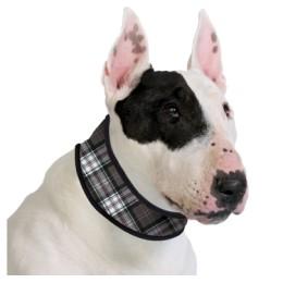 Collar Aqua CoolKeeper Scottish Grey per a Gossos